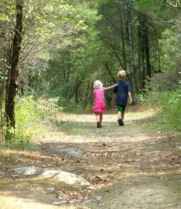 866282_brother_and_sister_walk_in_woods_1