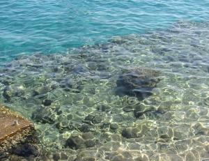 1341529_shoreline_rocks_2
